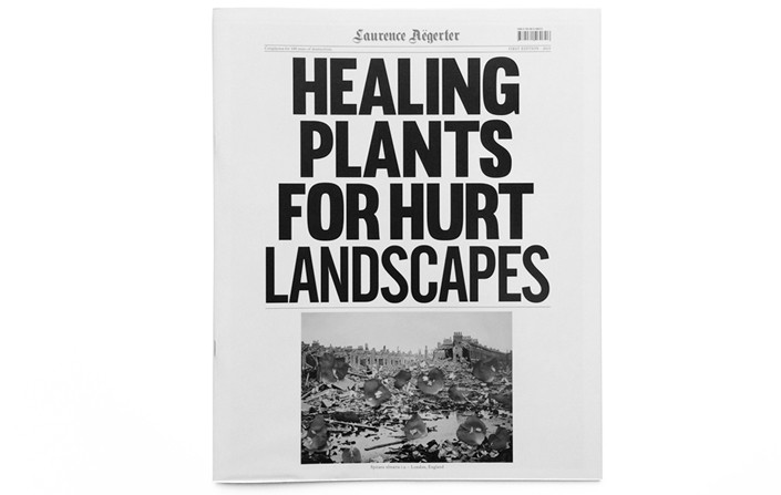 Healing Plants for Hurt Landscapes