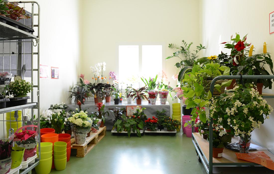 tuincentrum_ALIGNEDWEB